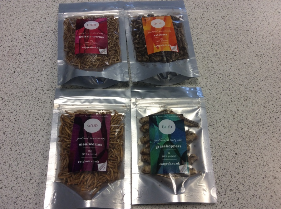 Using Edible Insects to include current food trends in product development with exam students